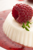 Vanilla panna cotta with berry sauce — Stock Photo