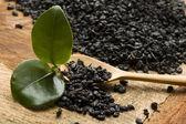 Čerstvé a sušené čaj — Stock fotografie