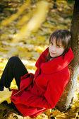 Vergadering onder herfst boom — Stockfoto