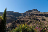 Gran Canaria Mountains and cliffs — Стоковое фото