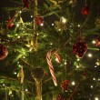 Beautiful christmas tree — Stock Photo #8294646