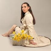 žlutý narcis — Stock fotografie