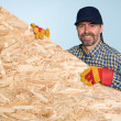 Carpenter holds a sheet plywood - Stock Photo