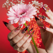 Manicure of beautiful hands with a flower — Stock Photo