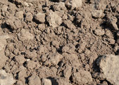 Clay soil - close-up — Stock Photo
