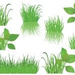 Set of vector green grass — Stock Vector