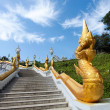Stairs with golden dragons — Stock Photo #10002566