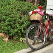 Red bicycle - Stock Photo