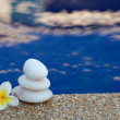 Plumeria flower and stones - Stockfoto