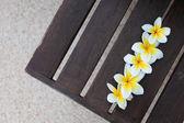 Flores tropicales en el banquillo — Foto de Stock