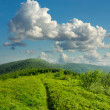 Summer landscape with green grass, mountains and clouds — Stock Photo