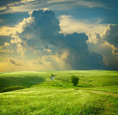 Summer landscape with green grass, road and clouds — Stock Photo