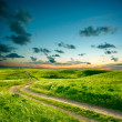Summer landscape with green grass, road and dramatic sky — Stock Photo