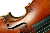 Part of violin on white background — Stock Photo