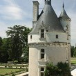 Chateau de Chenonceau. Loire. France — Stock Photo #8588608