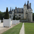 Chateau de Chenonceau. Loire. France — Stock Photo #8588757