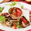 Grilled chicken and salad in tortilla wrap — Stock Photo #10575465