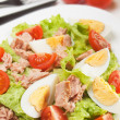 Stock Photo: Egg and tunsalad