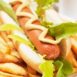 Hot dog with lettuce and french fries - Stock Photo