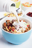Cereal muesli with dried fruit and nuts — Stock Photo