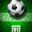 Royalty-Free Stock Vector Image: Soccer 2012