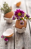 Homemade Easter decoration — Stock Photo