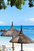 Paraguas de sol, playa, mar. mauricio — Foto de Stock