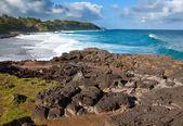 Gris gris zielonego na od mauritiusa. duże fale, w przypadku braku rafy. — Zdjęcie stockowe