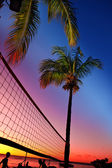 Grid for beach volleyball between palm trees at a sunset and sea background — Stock Photo