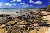 Mauritius. Stony landscape of the island Gabriel. — Stock Photo