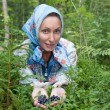 Young woman plucks bilberry in forest — Stock Photo #10662432