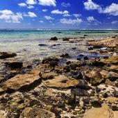 Mauricio. paisaje pedregoso. isla gabriel. — Foto de Stock