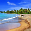 Stock Photo: Jamaica. national boat on sandy coast of bay
