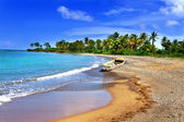 Jamaica. A national boat on sandy coast of a bay — Stock Photo