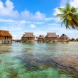 Typical Polynesian landscape - seacoast with palm trees and small houses on — Stock Photo
