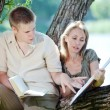 Young guy and the girl prepare for lessons, examination in spring park - Stock Photo