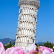 Italy. Pisa. The Leaning Tower of Pisa — Stock Photo