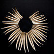 Stock fotografie: Necklace from teeth of predator