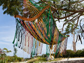 Mexico. A traditional hammock — Stock Photo