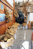 Natural sponges. Market in Greece — Stock Photo