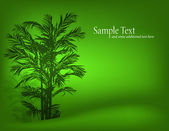 Bamboo, tree — Vector de stock