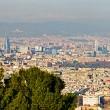 Stock Photo: Aerial View PanoramOver Barcelonfrom Montjuic