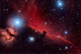 Horsehead Nebula and Flaming Tree in the Constellation Orion — Stock Photo