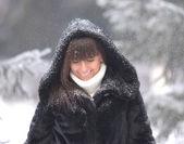 Snowfall — Zdjęcie stockowe