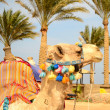 Camel on the beach — Stock Photo #9176650