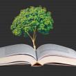 Tree growing from open book - Foto Stock