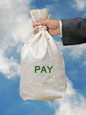 Bag with pay — Stock Photo