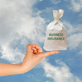 Bag with business insurance — Stock Photo