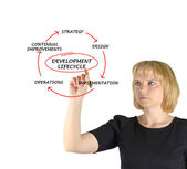 Diagram of development lifecycle — Stockfoto