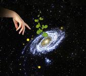 Roślin w centrum galaxy.elements ten obraz dostarczony przez na — Zdjęcie stockowe